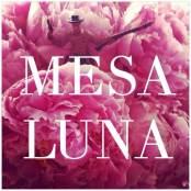 MesaLunaidea